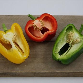 Moestuinplant Mixpakket diverse paprika planten