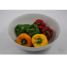 Mixpakket diverse paprika planten