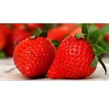 Aardbeien planten ''Ostara''