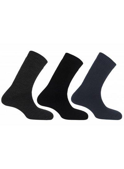 Teckel 3 paar thermo sokken teckel