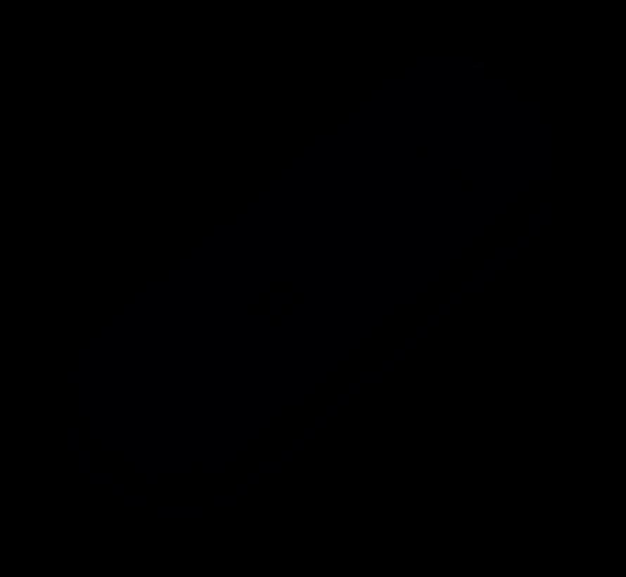 MS2372h-518