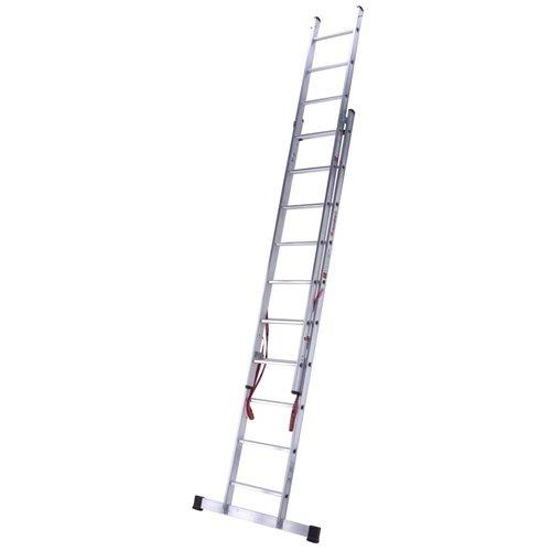 Euroline Ladder dubbel recht 2x10 sporten