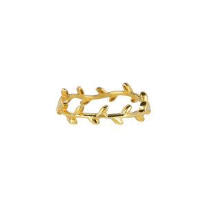 Marissa Eykenloof Ring dun goud