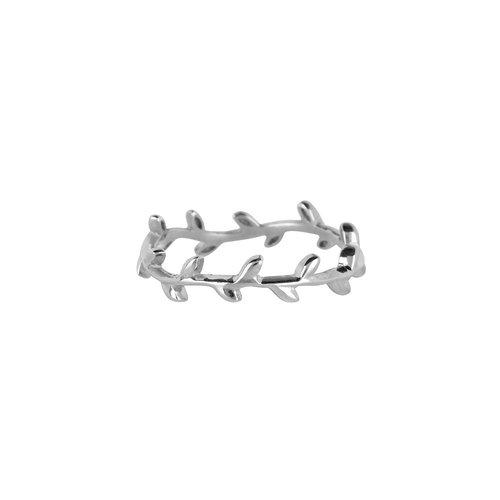 Marissa Eykenloof Ring dun zilver