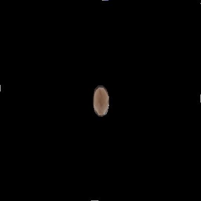 Oval Smokey quartz