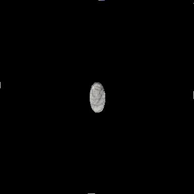 Oval Tourmalinated quartz