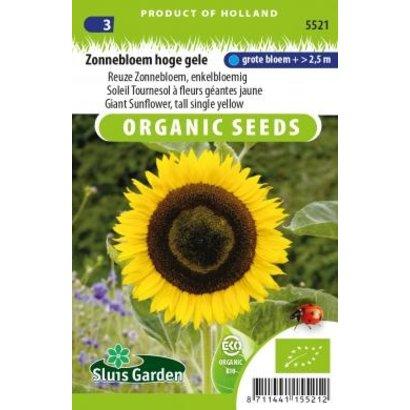 Sluis Garden Reuze Zonnebloem, enkelbloemig, hoge gele