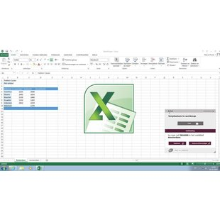 Excel 2010 Basis E-learning
