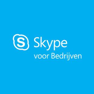 Cursus Skype voor Bedrijven Incompany
