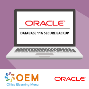Oracle Database 11g Secure Backup E-learning