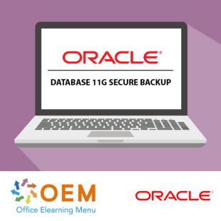 Oracle Database 11g Secure Backup