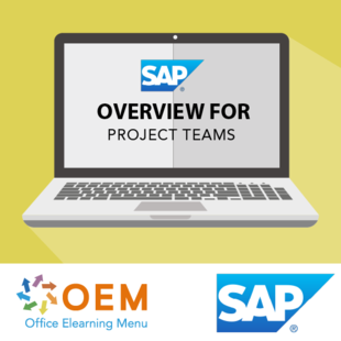 Training SAP overview for Project Teams