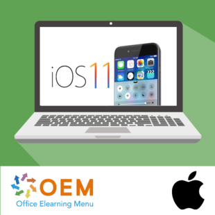 Fundamentals of iOS 11 E-learning