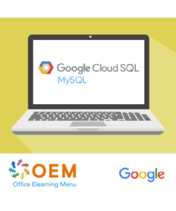 Google Cloud SQL for Developers E-learning