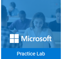 77-727 Microsoft Office - Excel 2016 Live Labs