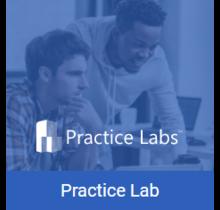 1Z0-051 Database 11g SQL Fundamentals I Live Labs