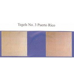 Demmerik 73 Terrastegel Puerto Rico - prijs per m2 Zalm