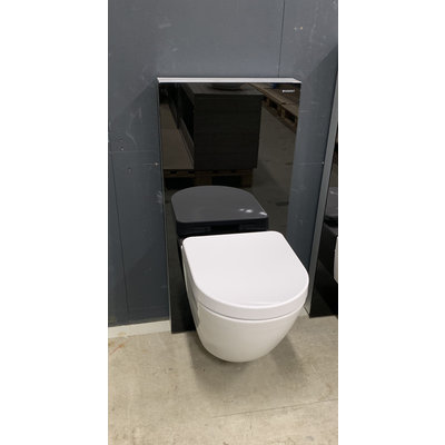 Geberit Monolith sanitairmodule + Toto rimless toilet.