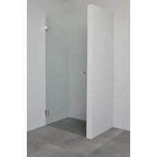 Sanitairstunthal Profielloze douchedeur 8 mm helder glas 100 cm breed x 200 cm hoog