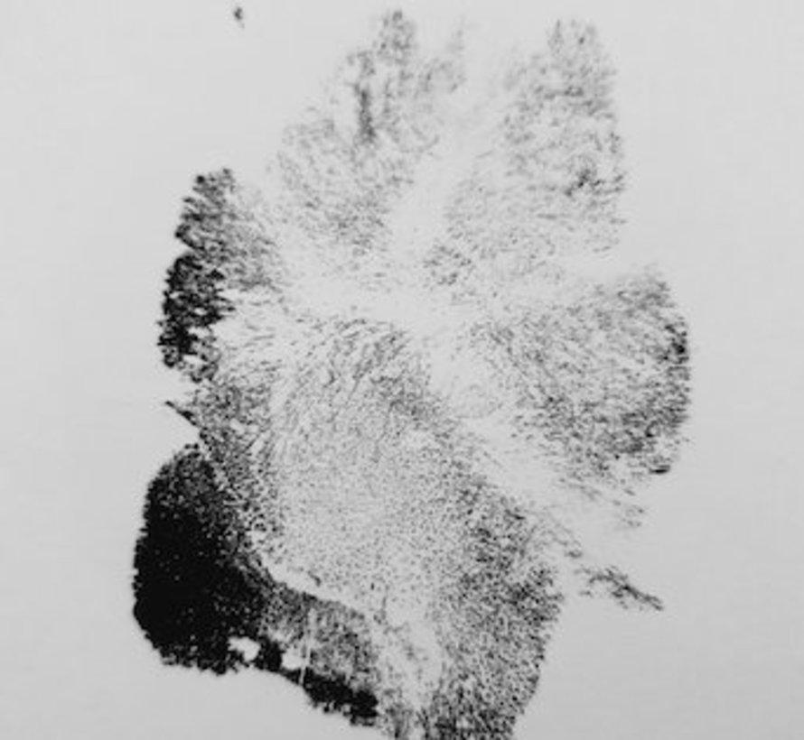 Inktloze Pootafdruk pad