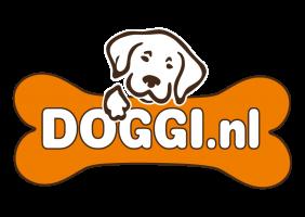 Doggi.nl - Natuurlijke ovengebakken hondentaarten, cupcakes!