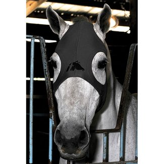 Fenwick Titanium Mask without ears