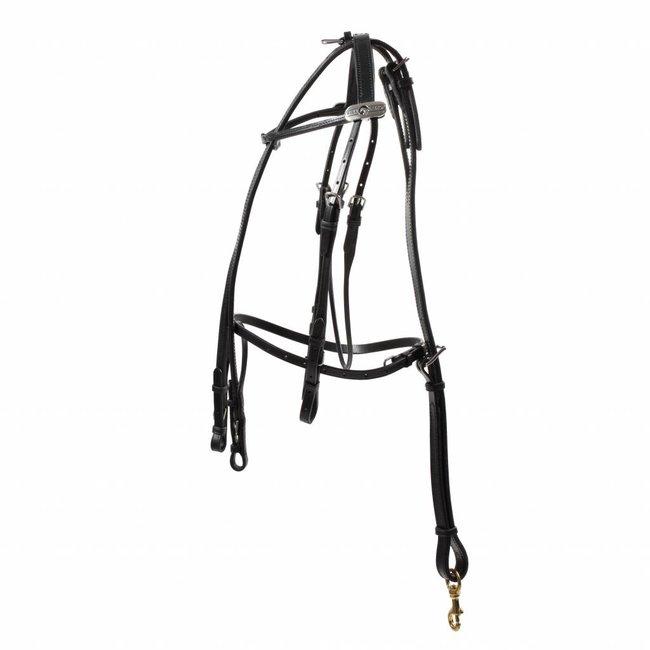 FinnTack Leather bridle Finntack