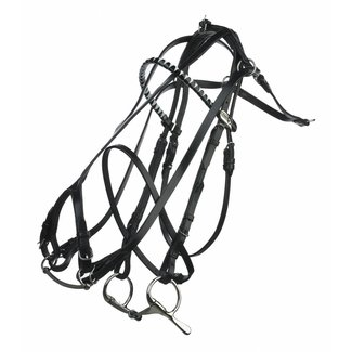 FinnTack Leather bridle double check