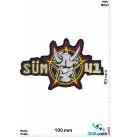 Sum 41 Sum 41 - Süm 41 - Rock-Band - silber