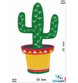 Cactus Kaktus