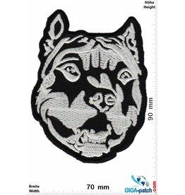 Wolf Wolf - Hund -Pitbull- schwarz silber - Kopf