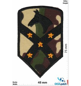 1st Cavalry 15th Sustainment Brigade, 1st US Cav Division - Pferd Army - camouflage