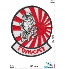 U.S. Navy F14 - Tomcat -Japan