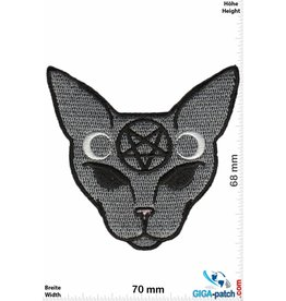 Pentagramm Pentagram Cat- Katze