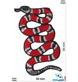 Snake King Snake - Snake