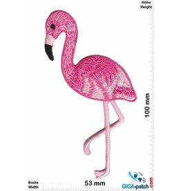 Flamingo Flamingo