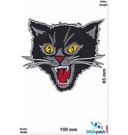 Cat Angry  Cat - Katze - HQ