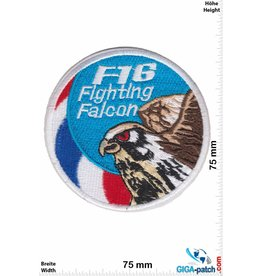 F 16 F-16 Fighting Falcon - USA Army HQ - small