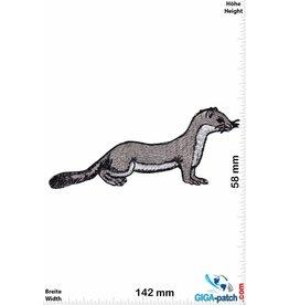 Marder - Wiesel - Hermelin