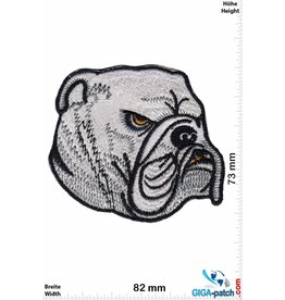 Bulldog Bulldog - Bulldogge- silver - HQ Hunde