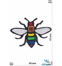 Rainbow   Rainbow Fly