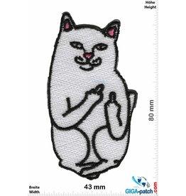 Katze - Cat - Fuck you