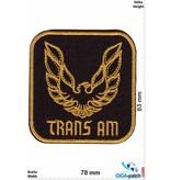 Trans AM - Pontiac