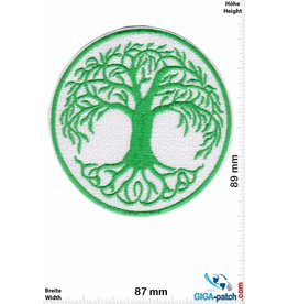 Tree of Life - Transition Age Youth