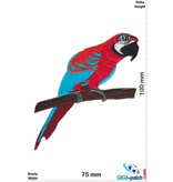 Parrot - red blue