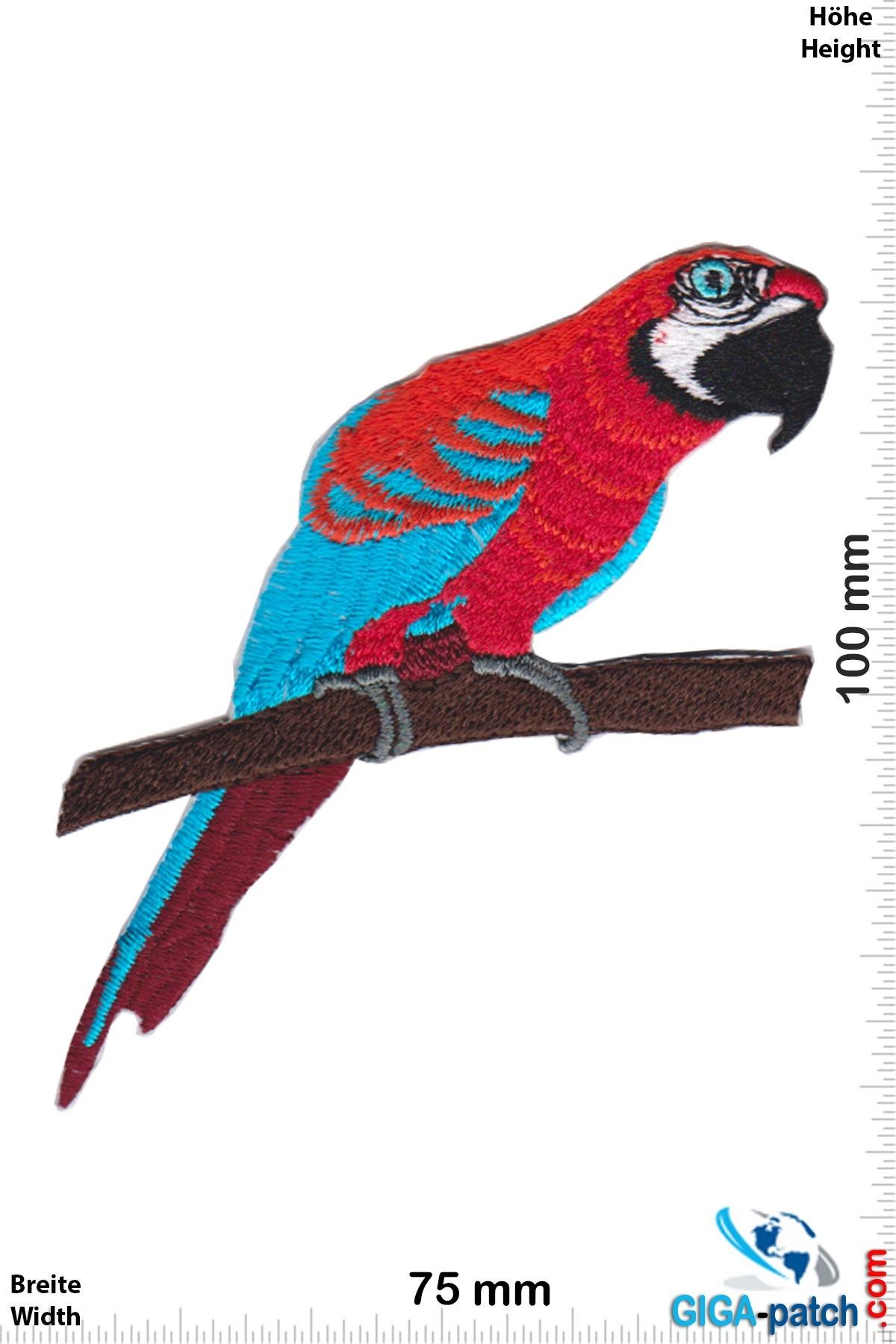 Papagei - rot blau