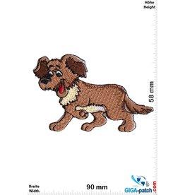 Hund Brauner  Hund - Struppel