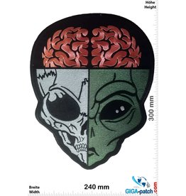 Alien Alien Skull - 30 cm