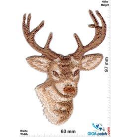 Deer  - Stag - 8 ender