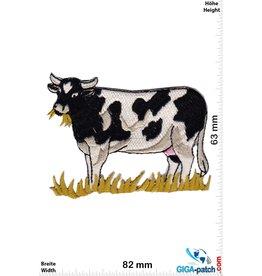 Kuh Grazing Cow